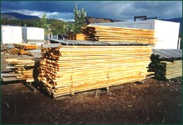 Consultancy to the timber industry